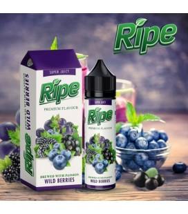 WILD BERRIES - Ripe